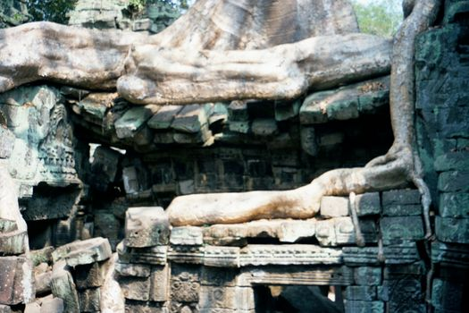 Cambodia (Angkor): Ta Prohm and Vicinity picture 16