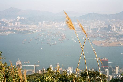 China: Hong Kong 2:From the Peak picture 5
