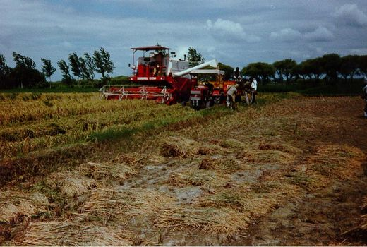 India Themes: Farming Technology picture 13