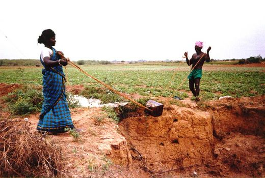 India Themes: Irrigation 1: Ancient Methods picture 4