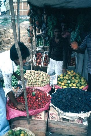 India Themes: Merchants and Markets picture 6