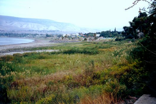 Israel: The Jordan River Below Kinneret picture 1