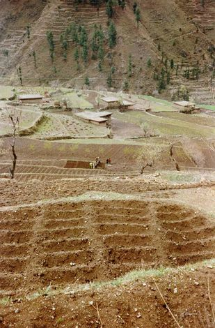 Pakistan: Mills of Swat picture 1