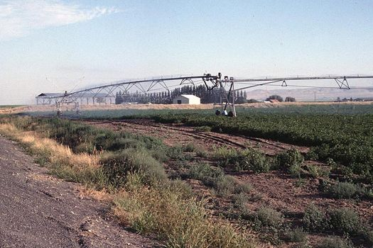 The Western United States: Bonanza Farming in the Columbia Basin picture 11