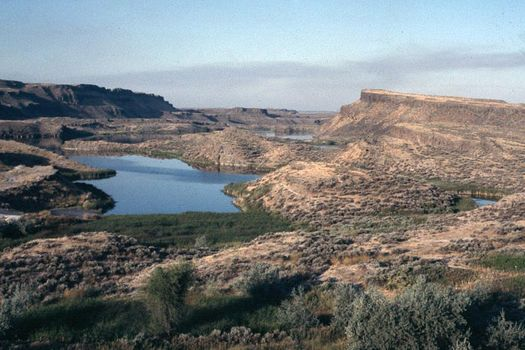 The Western United States: Bonanza Farming in the Columbia Basin picture 17