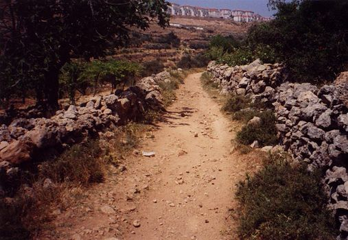 The West Bank: Israeli Settlements picture 3