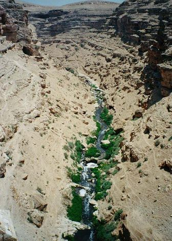 The West Bank: Mar Saba picture 1