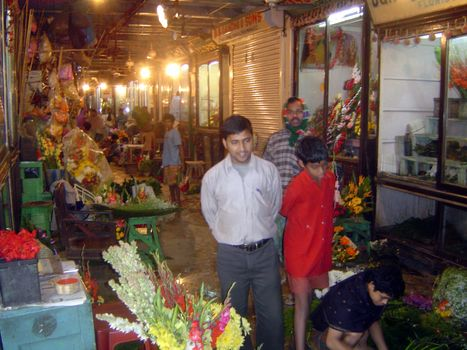 Northern India: Calcutta's New Market picture 9