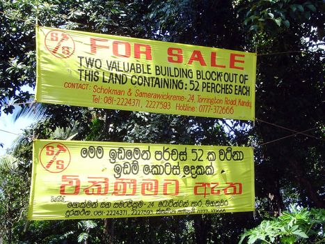 Sri Lanka: Kandy: Now picture 12