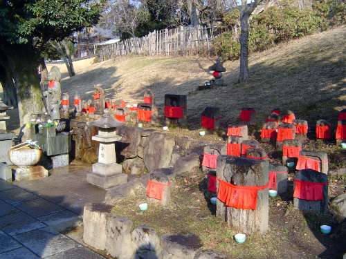 Japan: Nara: Shrines & Temples picture 18