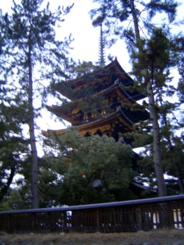 Japan: Nara: Shrines & Temples picture 21