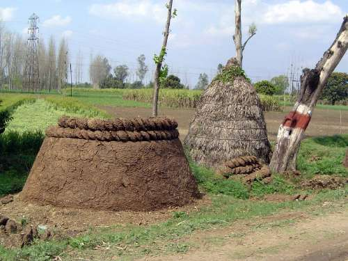 India Themes: Farming Technology picture 8