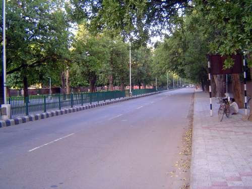 Northern India: Chandigarh picture 5