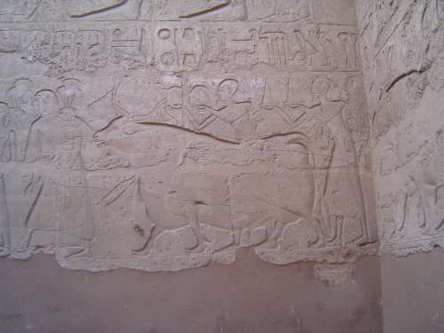 Egypt: Luxor Temple picture 12