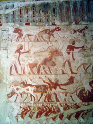 Egypt: Tomb of Userhet picture 4