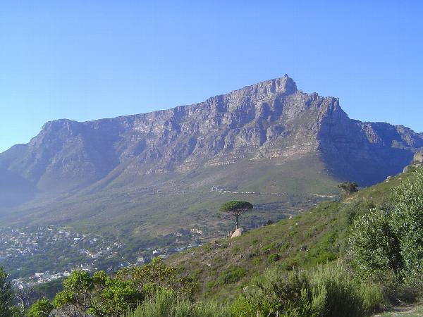 South Africa: Cape Peninsula picture 41