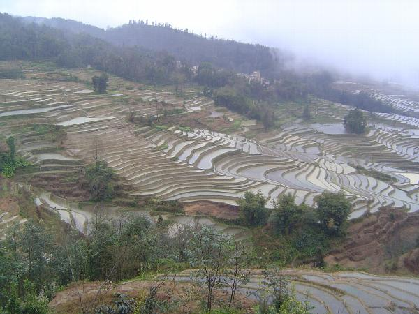 China: Hani Terraces 1: Walking a Channel picture 4