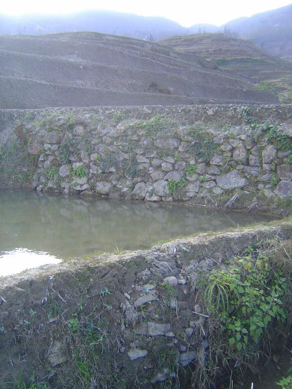 China: Hani Terraces 1: Walking a Channel picture 53