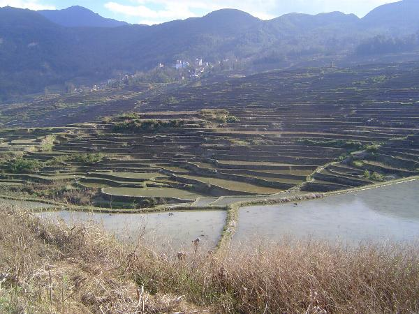 China: Hani Terraces 1: Walking a Channel picture 50