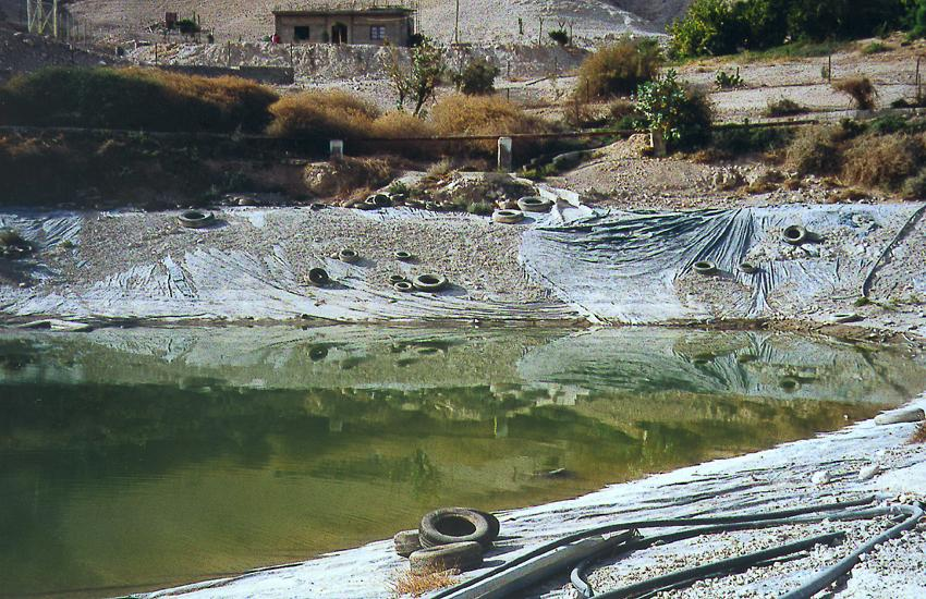 The West Bank: Wadi Qelt and Ein Sultan picture 12