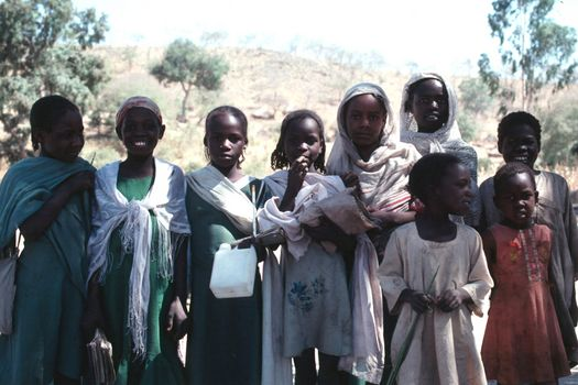 Sudan: Darfur and Kordofan picture 20