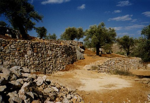 The West Bank: Jifna and Jiljilya picture 13