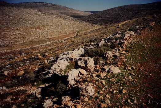 The West Bank: Southern Countryside picture 1