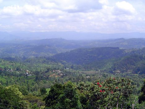 Sri Lanka: Tea Country picture 29