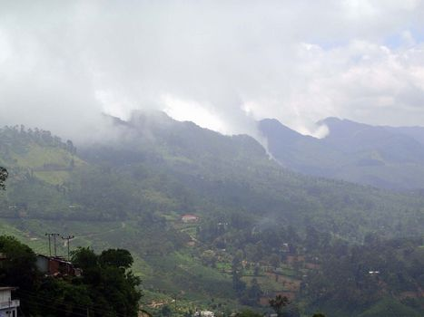 Sri Lanka: Tea Country picture 32