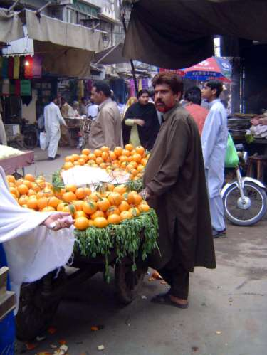 Pakistan: Lahore: the Old City picture 24