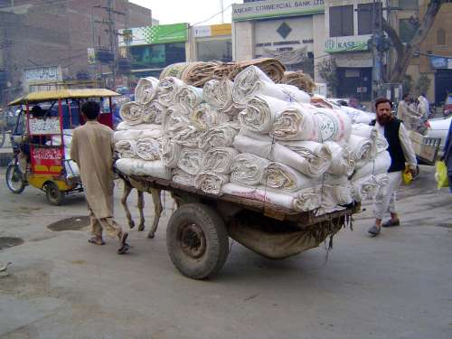 Pakistan: Lahore: the Old City picture 20
