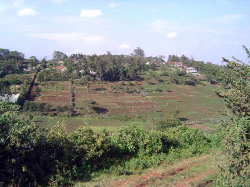 Kenya: Blixen and the Ngong Hills  picture 10