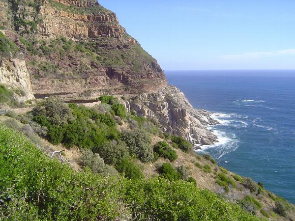 South Africa: Cape Peninsula picture 32