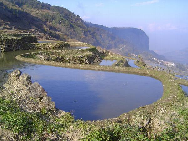 China: Hani Terraces 1: Walking a Channel picture 12