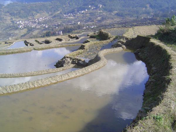 China: Hani Terraces 1: Walking a Channel picture 33